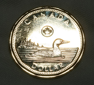 Loonie, cc Flickr S. Rae, modified, https://creativecommons.org/licenses/by/2.0/